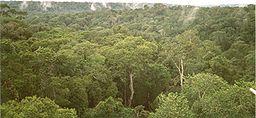 essay on biodiversity wikipedia