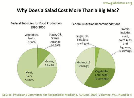 Meat and dairy formed over 73% of US food/farm subsidies from 1995-2005 even though it should only around 20% of a persona's diet