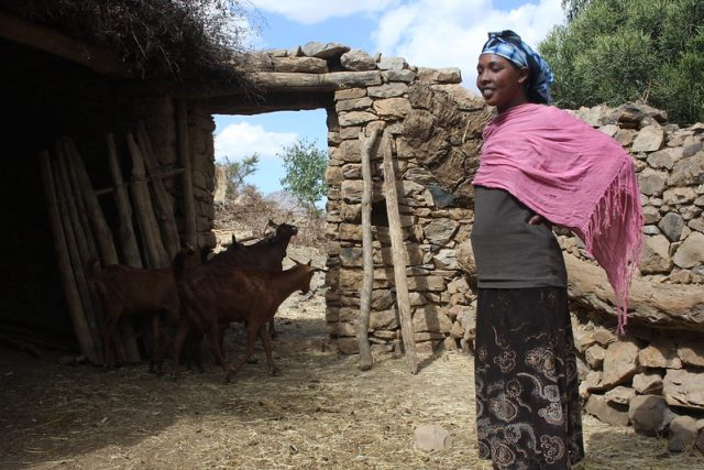 In Ethiopia's northern Tigray region. Norwegian Refugee Council (NRC) says that for three months Ethiopia's Tigray Region has been completely blocked off from the world. The reports that have trickled out speak to extensive violence, extensive conflict and extensive impact on civilians, the humanitarian agency says. (File photo) Credit: James Jeffrey/IPS