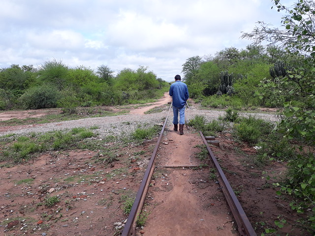A man walks along an old, abandoned railway track in a rural area of Argentina's Chaco region where most of the native forest has been cleared. This region accounts for the bulk of the nearly 180,000 hectares of forest that, according to official data, are lost each year in Argentina. CREDIT: Daniel Gutman /IPS