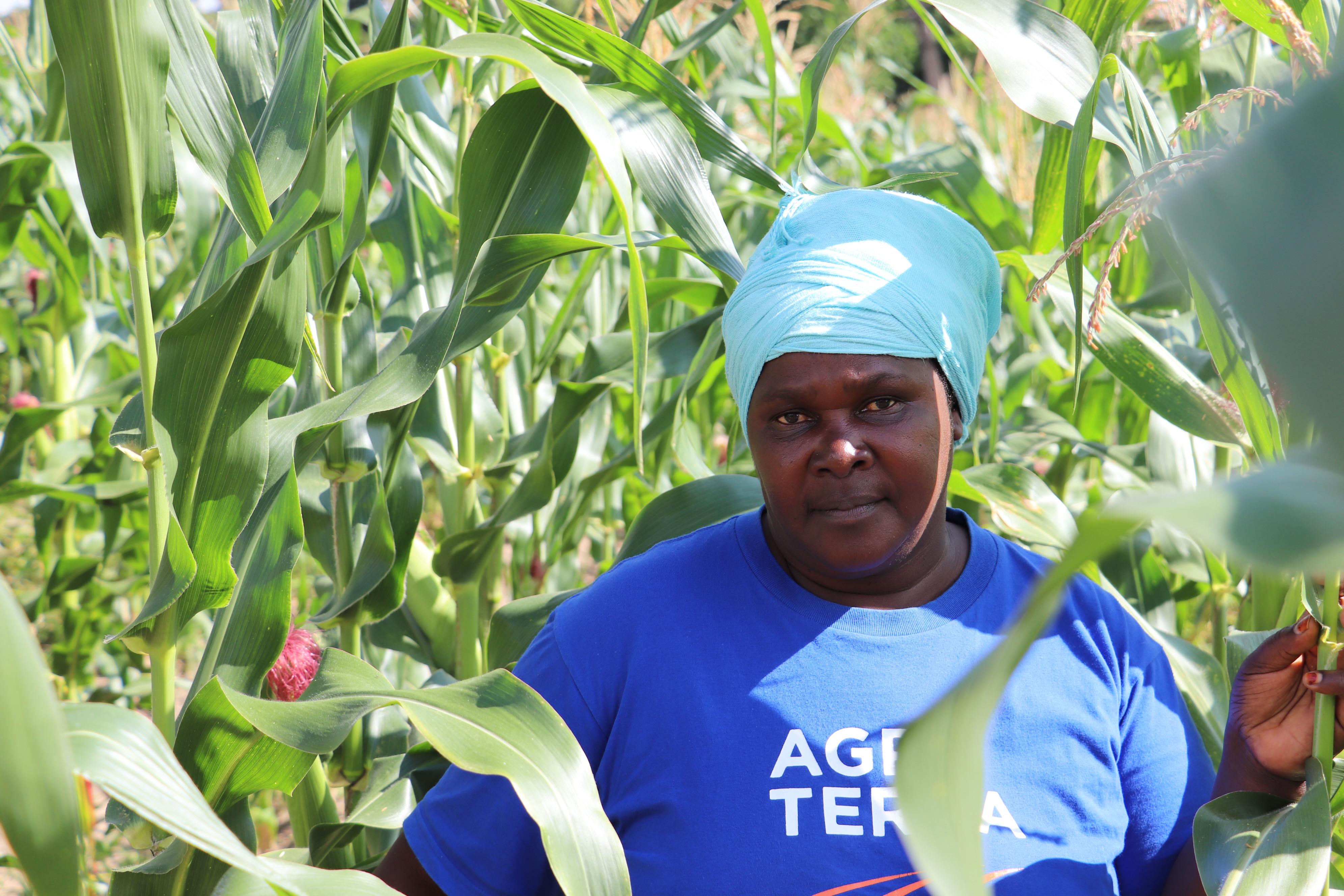 Farming-Specific Loans Help Tanzania's Smallholders Increase Productivity
