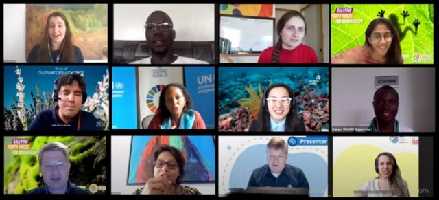 Global Youth Summit speakers during live sessions and intergenerational dialogues. Courtesy: International Union for Conservation of Nature (IUCN)
