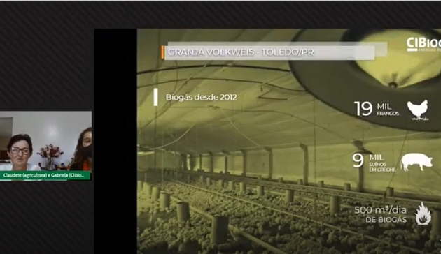 A screenshot from Claudete Volkswey's videoconference presentation at the South Brazilian Biogas and Biomethane Forum shows the poultry shed where she raises some 19,000 chickens. She decided to produce biogas on the family farm, using a biodigester fueled by the manure from the pigs that are also raised on her farm, and abandoned the use of the wood-burning stove, which would keep her or another family member up at night as it needed to be stoked every two hours to keep the newly hatched chicks alive on nights when temperatures sometimes drop below freezing. CREDIT: Mario Osava/IPS