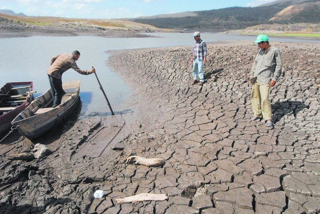 Desertification - Why Stakeholder Coalitions Could Be Key to the Glasgow Climate Summits Success