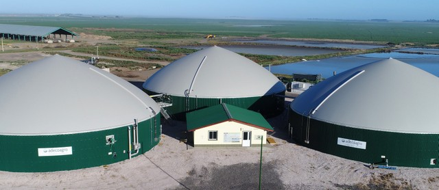 In Cristophersen, a town in northeastern Argentina, biodigesters were built by Adecoagro, an agroindustrial company that invested six million dollars to produce biogas from the manure of 12,000 cows. Adecoagro has been selling renewable energy to the national electricity grid for more than three years. CREDIT: Courtesy of Adecoagro